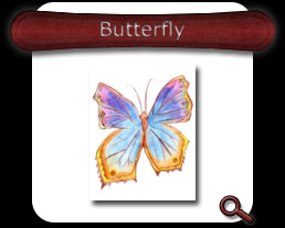 Buy Butterfly Note Card